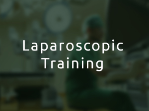 IRSI-Training-laparoscopy-b